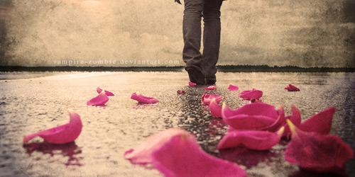 Перейти на Walking Away From Everything