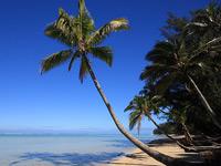 Скачать картинки с изображениями солнечных тропических пляжей