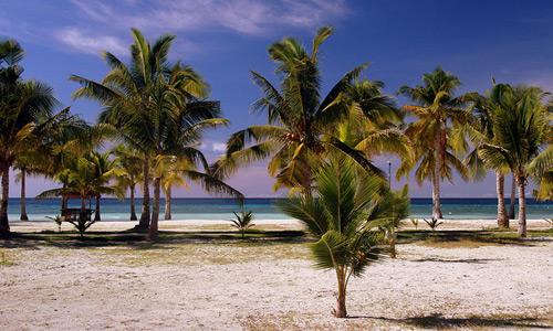 Скачать Asia - Philippines / Bohol - Tropics Hotel