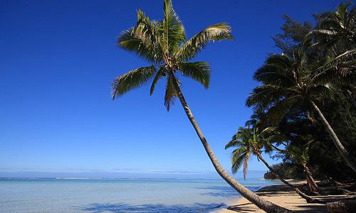 Скачать Tropics