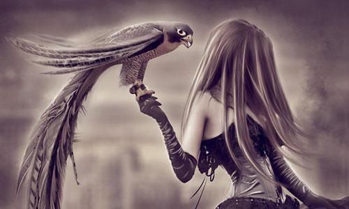 Перейти на Falcon Dancer