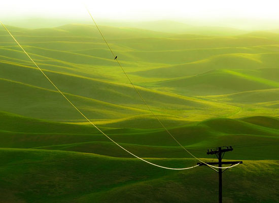 Перейти на Palouse, Washington
