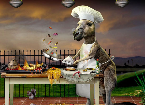 Перейти на Roo Chef