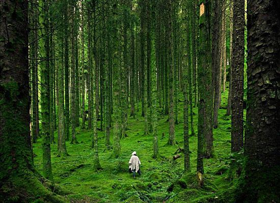Перейти на Hiker, Scottish Highlands