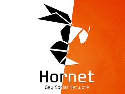 Перейти на Hornet Logo