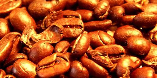 Перейти на And The Beans