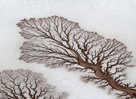 Перейти на Desert Rivers Mexico