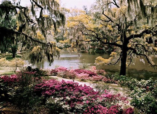 Перейти на Middleton Gardens, South Carolina