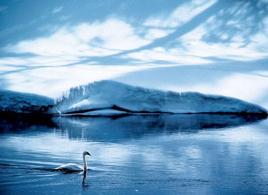 Перейти на Swan, Wyoming