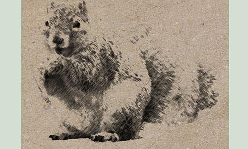 Скачать Squirrel Brush