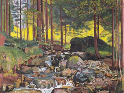 Forest with a mountain stream