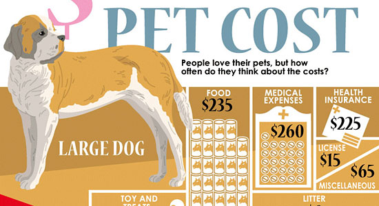 Pet Costs Infographic