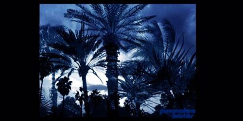 Перейти на Palm Tree Brush Set