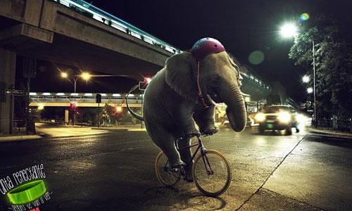 Перейти на 3M: Elephant