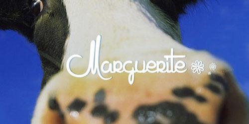 Скачать Marguerite