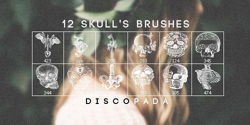 Перейти на 12 Skulls And Anatomy Brushes