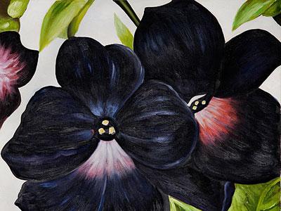 Перейти на Black And Purple Petunias