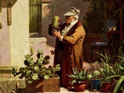 Перейти на The Cactus Lover