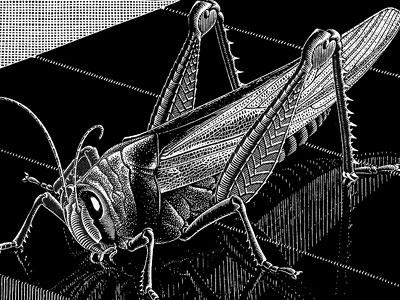 Перейти на Grasshopper