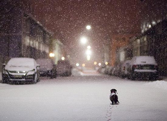 Перейти на Winter Is Here