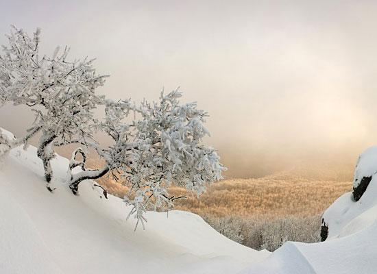 Перейти на Carpathian Winter