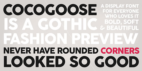 Перейти на Cocogoose