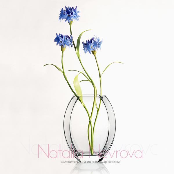 Наталья Неврова